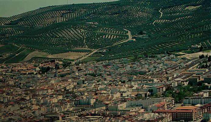 Jornada sobre El Patrimonio Agroecológico del Olivar Español - 24 de Mayo