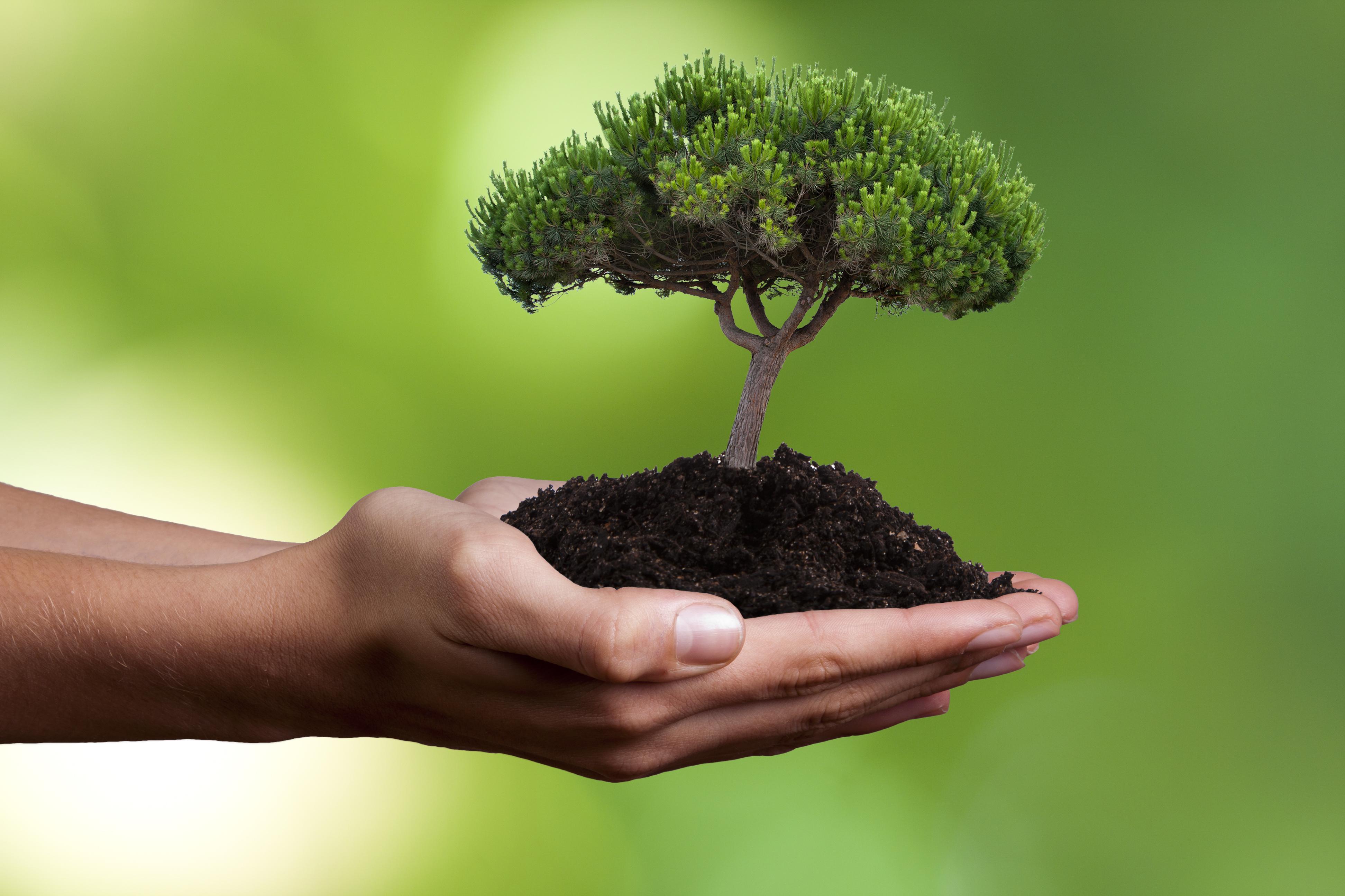 Los 17 objetivos de la Agenda 2030 para el Desarrollo Sostenible