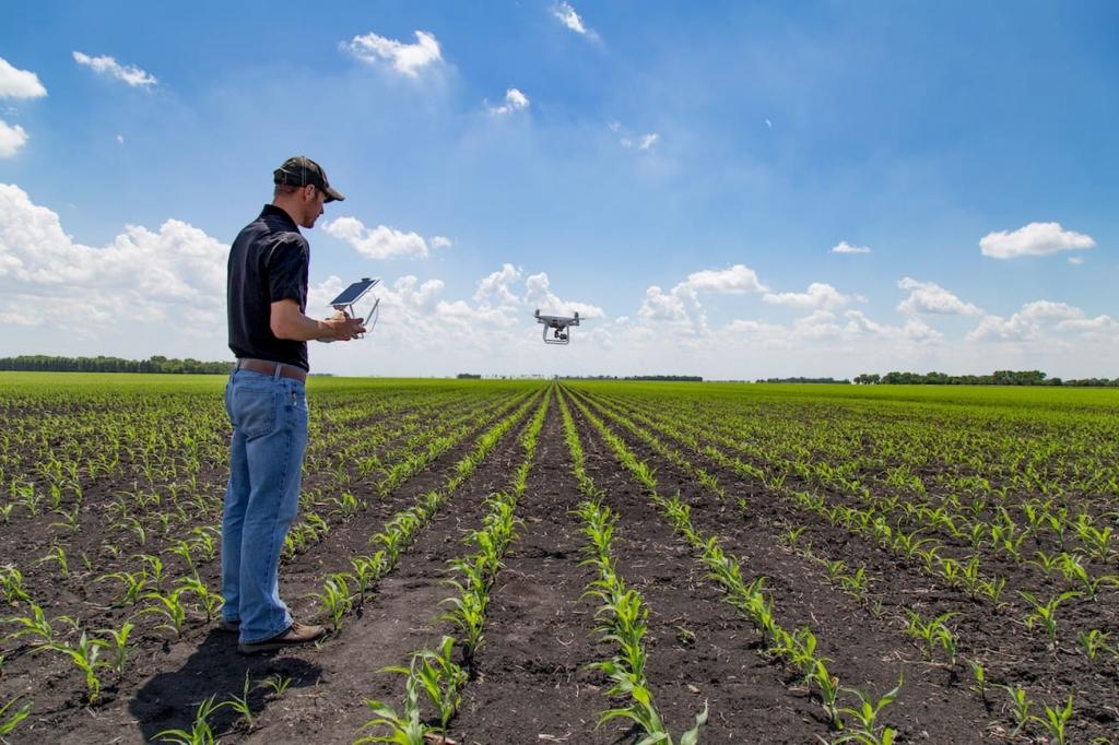 La digitalización, clave para lograr una agricultura 4.0
