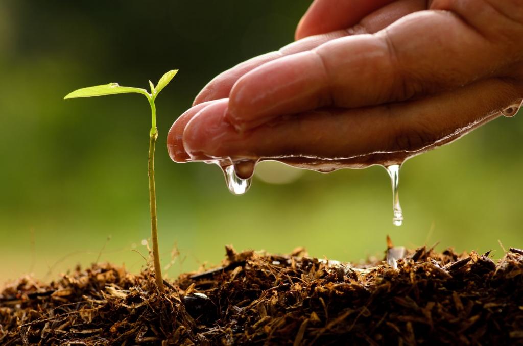 La agricultura circular y la agrotecnología, las novedades de Agraria 2019